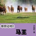 草原动物2:马王